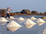 Hạt muối