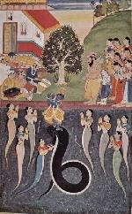 Rắn thiêng xứ Ấn