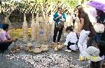 6 tháng: Trên 4000 du khách về thăm Làng cổ Phước Tích