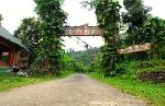 Vườn quốc gia Bạch Mã bị lâm tặc phá hoại