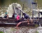 Tan nát bờ sông thôn Vĩ Dạ