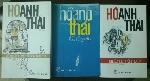 Tiểu thuyết Carnaval hóa của Hồ Anh Thái nhìn từ hình tượng nhân vật nghịch dị