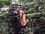 Rà soát công tác sắp xếp, chỉnh trang, kiểm tra dây thuê bao và thực hiện ngầm hóa trên địa bàn thành phố Huế