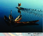Thơ Sông Hương 11-16
