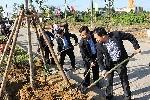 Thành phố Huế: Phát động Tết trồng cây xuân Đinh Dậu 2017