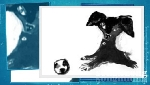 Chó - Từ biểu tượng văn hóa đến hình tượng văn học độc đáo