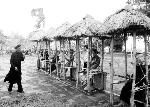 Bài Chòi - Từ trò chơi dân gian truyền thống đến di sản văn hóa phi vật thể đại diện của nhân loại
