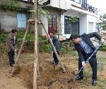Thành phố Huế: Phát động Tết trồng cây Xuân Mậu Tuất 2018