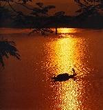 Thơ Sông Hương 06-2009