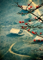 Chùm thơ Bùi Đức Vinh