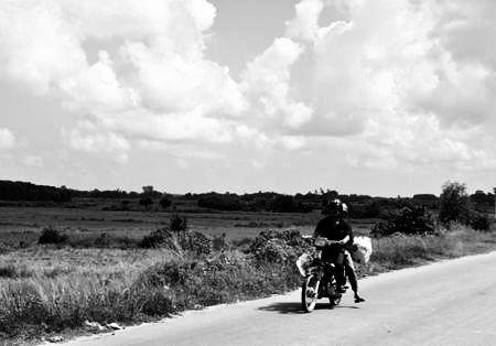 Trở lại Phong Sơn
