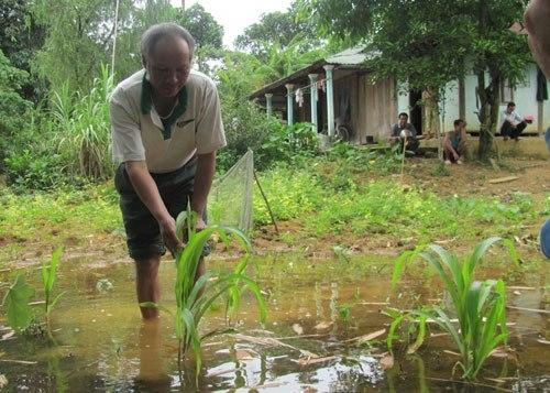 Tràn thủy điện: 3 xã của huyện A Lưới ngập lụt