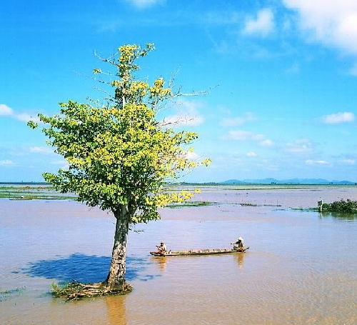 Nghĩ về văn học và nông thôn, nông dân ở đồng bằng sông Cửu Long