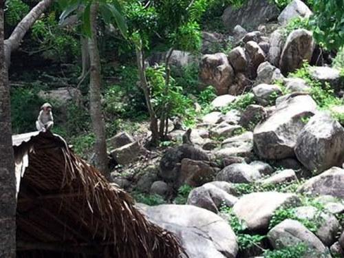 Thất Sơn - buồn vui trò khỉ