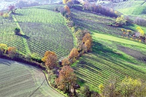 """Emilia Romagna - """"Ăn, cầu nguyện và yêu""""*"""