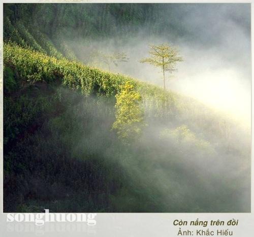 Chùm thơ Huỳnh Minh Tâm