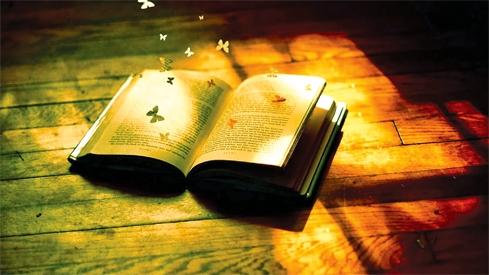 San sẻ sách