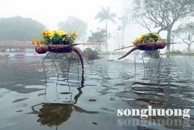 Chuyện hoa ngày tết ở Huế