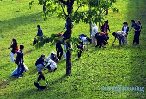 Vai trò của màu xanh xứ Huế
