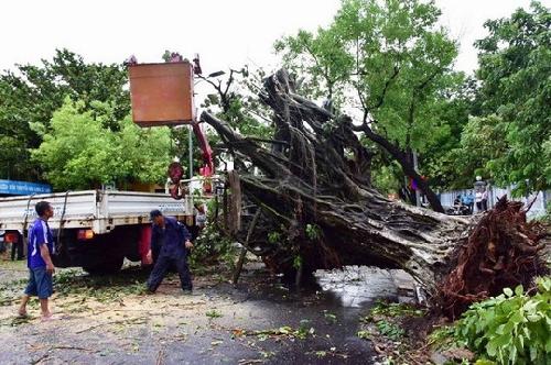 Thừa Thiên Huế thiệt hại nặng nề vì bão số 5
