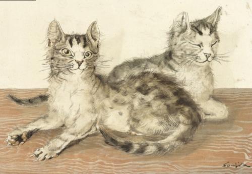 Mèo Huế