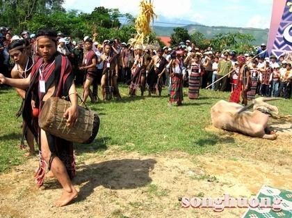 Đặc điểm các giá trị văn hóa phi vật thể của dân tộc Ta Ôi